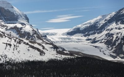 Is the Columbia Icefield Skywalk in Jasper National Park worth it?