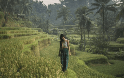 SEVEN THINGS YOU DON'T WANT TO MISS IN UBUD